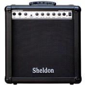 Cubo Amplificador Sheldon Para Contrabaixo BSS500