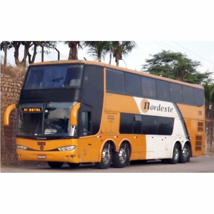 2 Ônibus em Miniatura DD Personalizados
