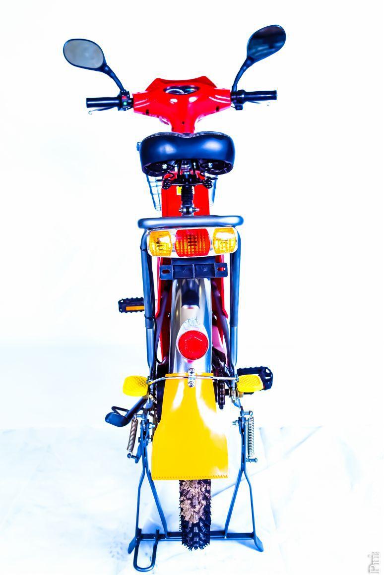 BICICLETA ELÉTRICA 350 W 48 V E-bike a melhor do Brasil