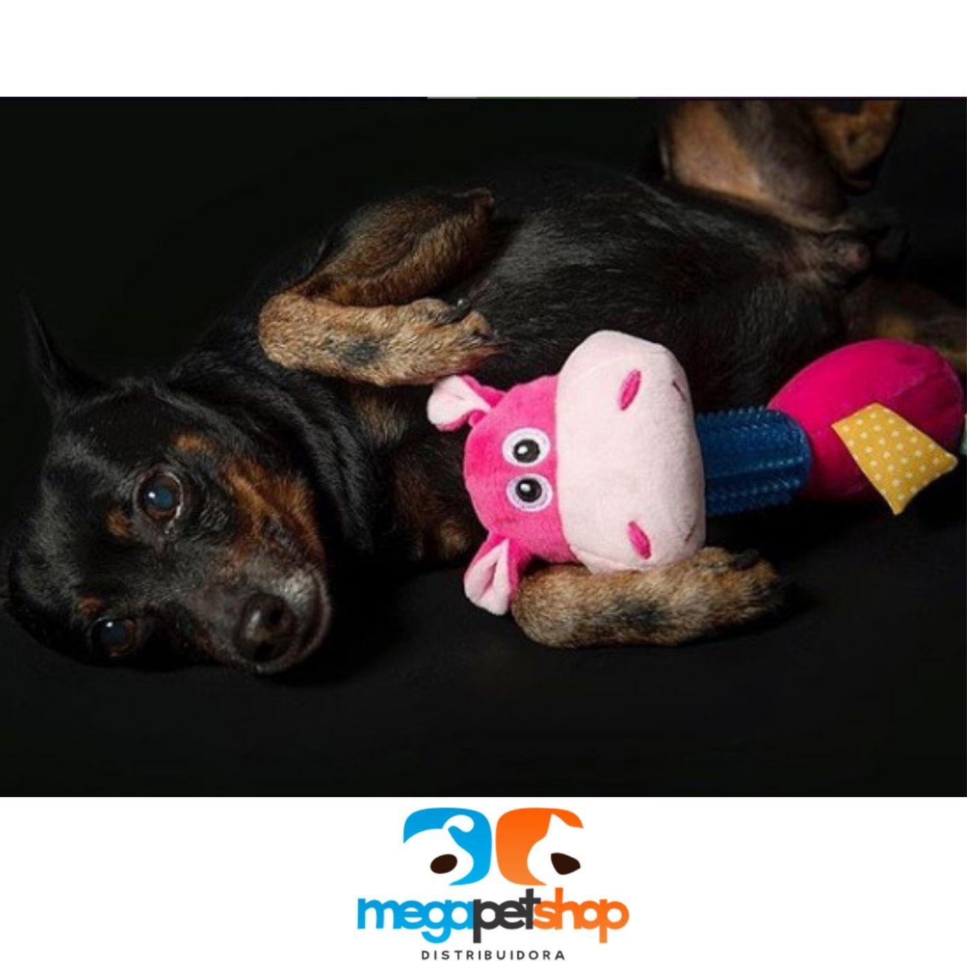 Brinquedo Hipopótamo com Mordedor Pawise