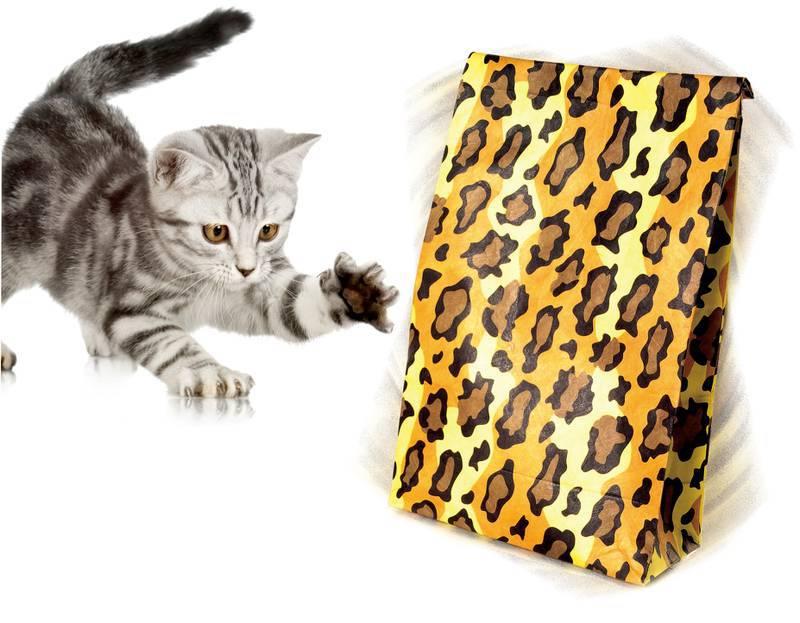 Brinquedo Interativo para Gato Bola Maluca Pawise