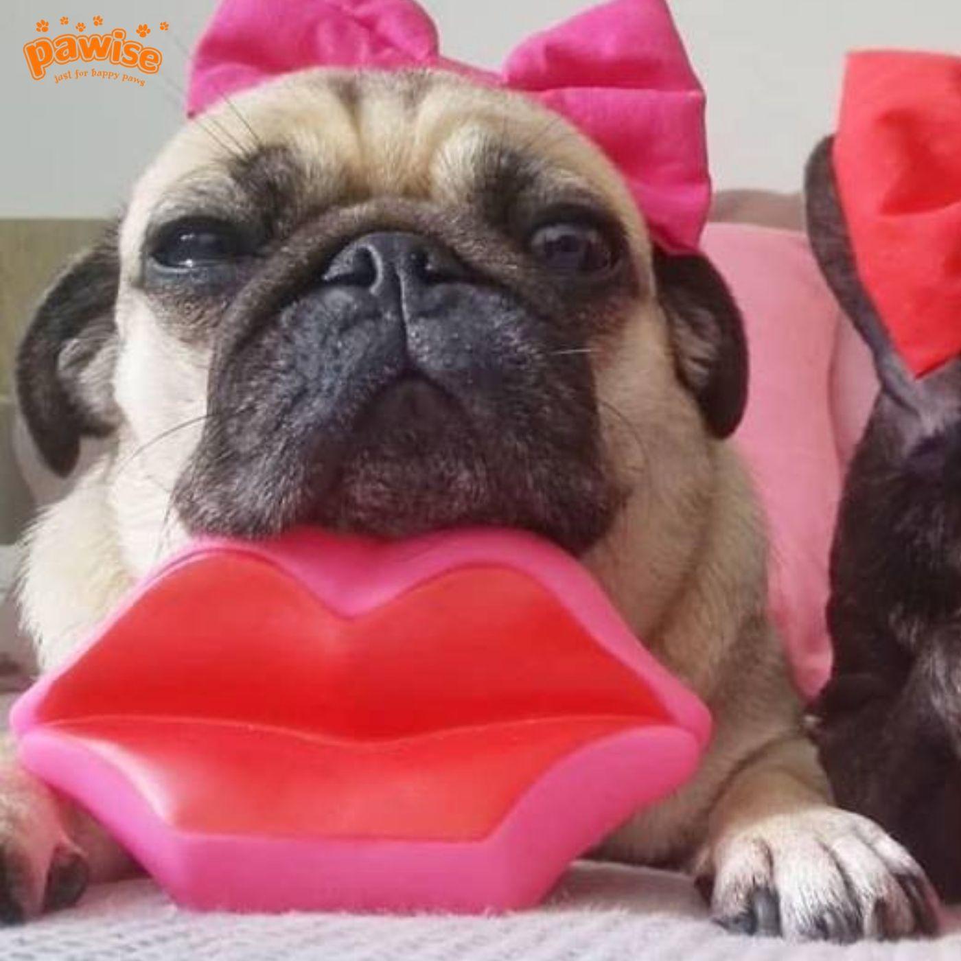 Brinquedo Lábios com Apito para Cachorro Pawise