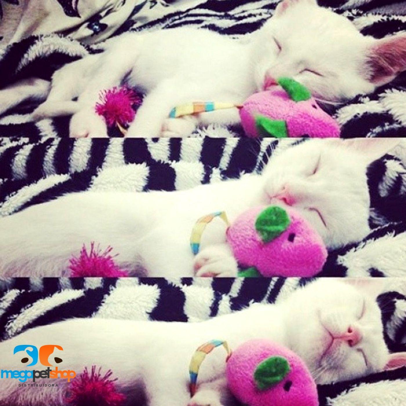 Brinquedo para Gato Ratinho com CATNIP Pawise