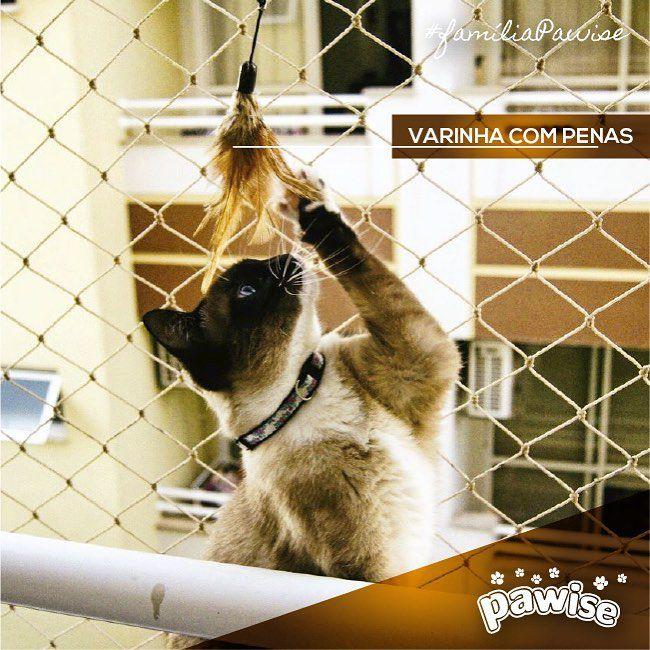 Varinha para Gato Dobrável  Pawise