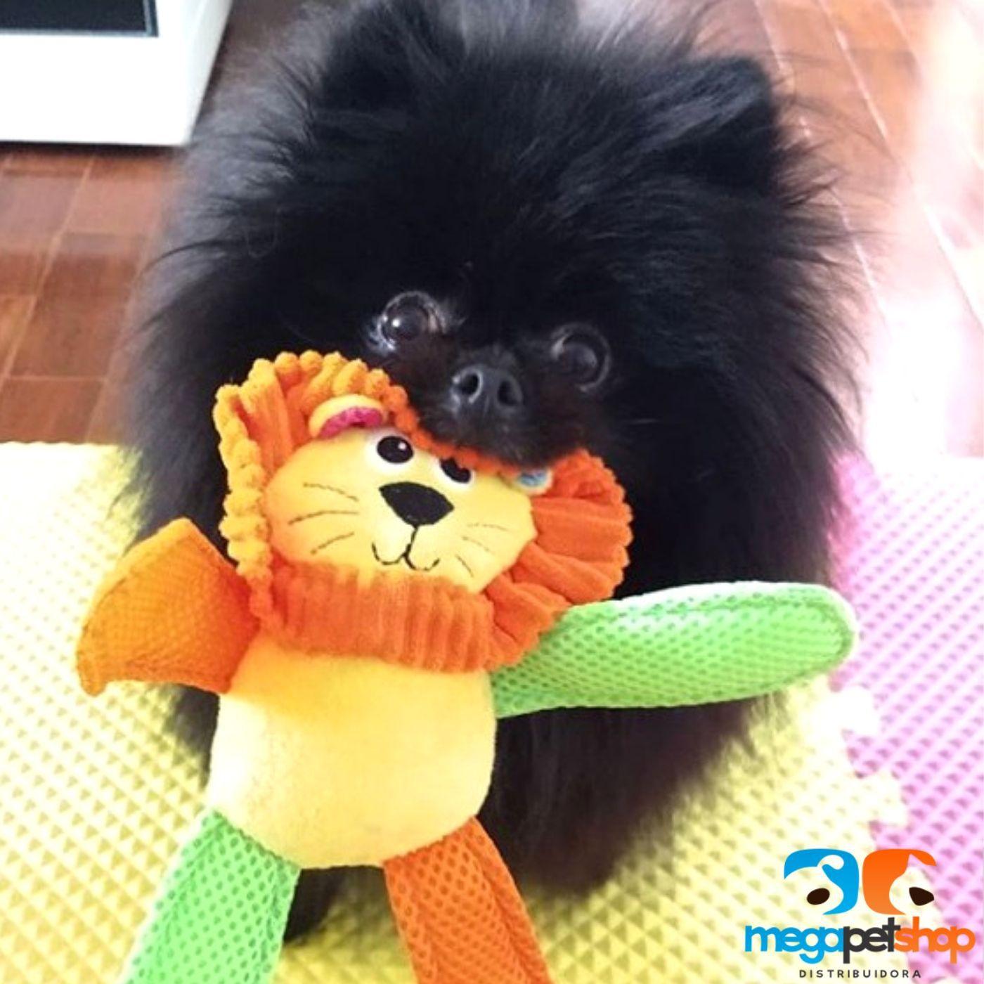 kit para cachorro Brinquedos Sortido Pawise