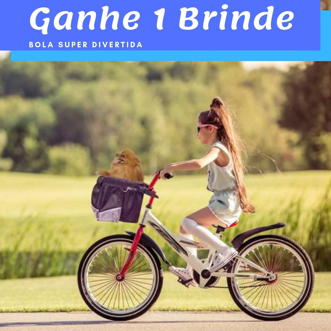 Cesto para Bicicleta 41x26x26 Pawise