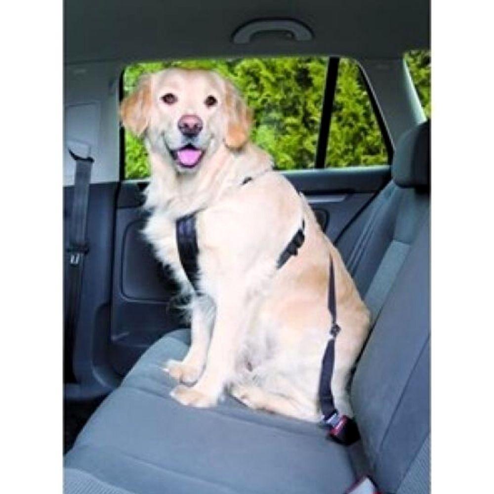 Cinto de Segurança para Cachorro Pequeno