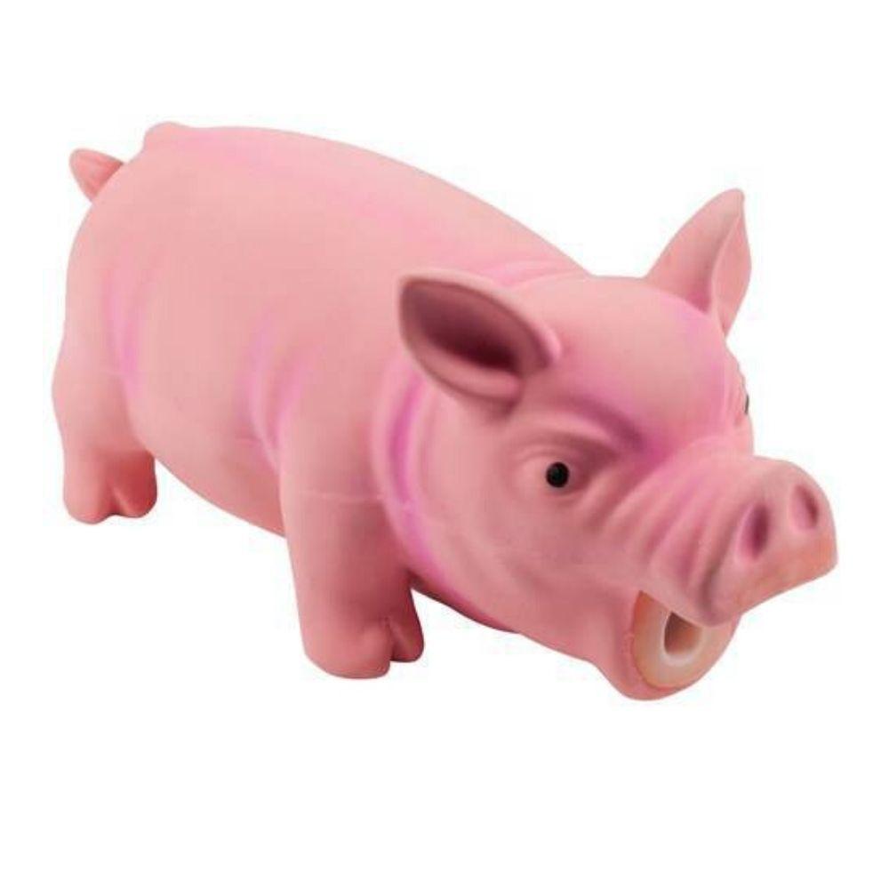 Brinquedo para Cachorro Porco Grunhe Pawise