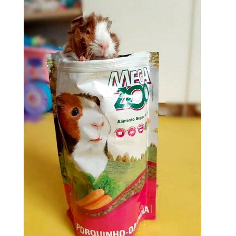 Ração para Porquinho da Índia 500 g Megazoo