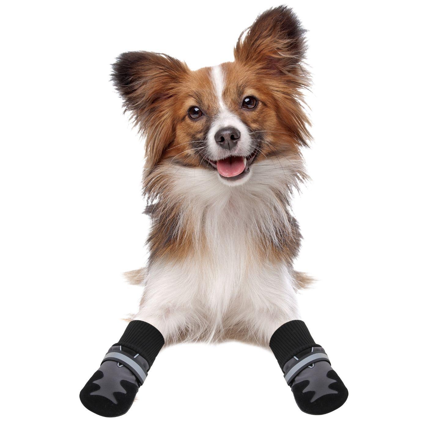 Sapato para Cachorro Tamanho PP  (2 pares) e 3 cata caca Pawise
