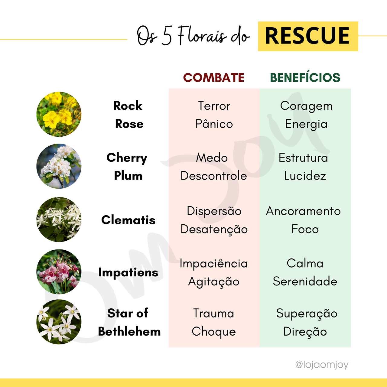 Rescue Gotas 10 e 20 ml - Florais de Bach - Original