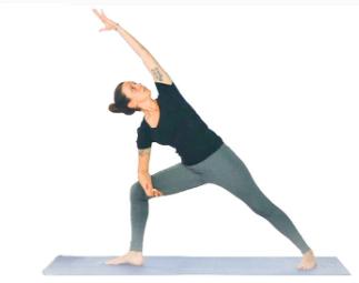 Curso Online Yoga para Iniciantes - As Principais Técnicas Básicas (link na descrição)