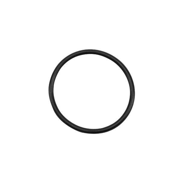 Anel O'ring MAN 51.96501-0574