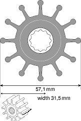 Rotor Jabsco para Gerador MaSE IS 14 | ONAN | VOLVO AQB4  -1210-0003