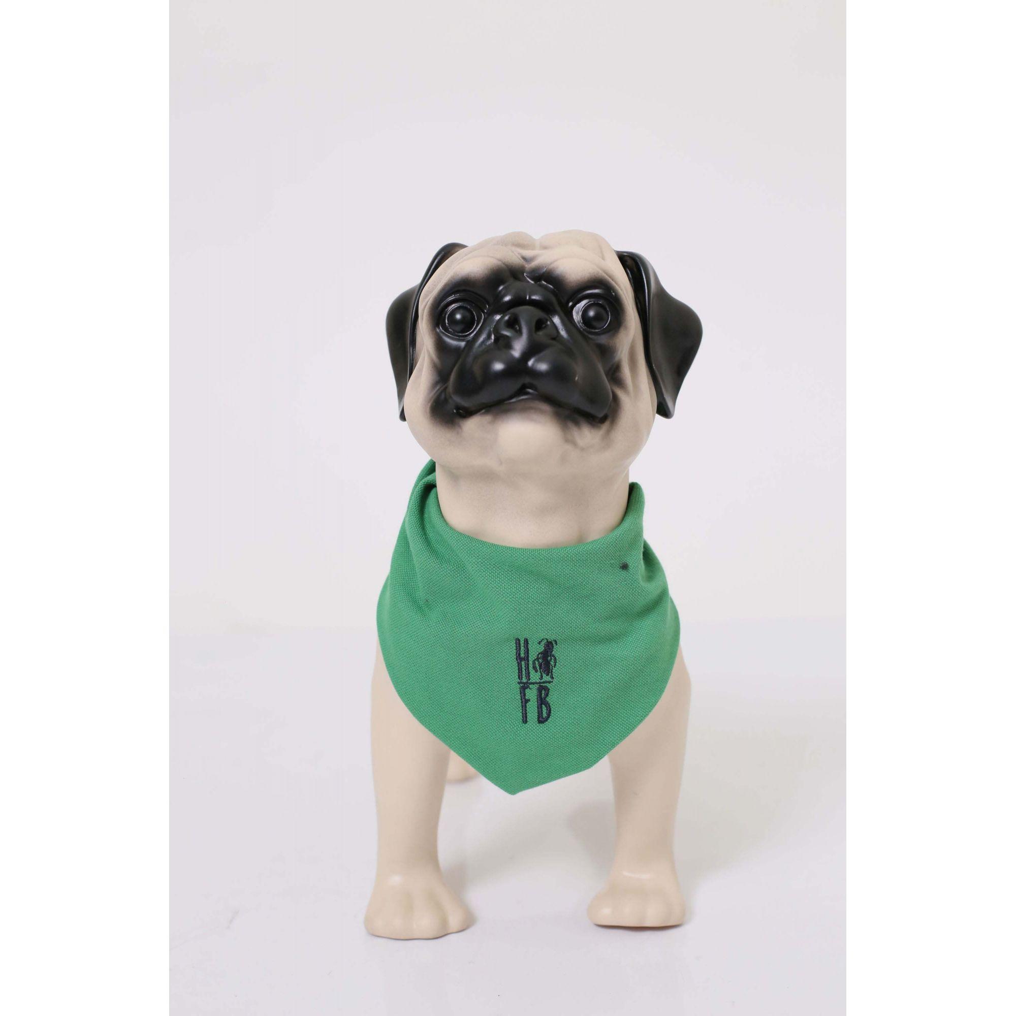 MÃE E PET > Kit 02 Peças - Camisa Polo e Bandana Verde Esperança [Coleção Tal Mãe Tal Filho]  - Heitor Fashion Brazil
