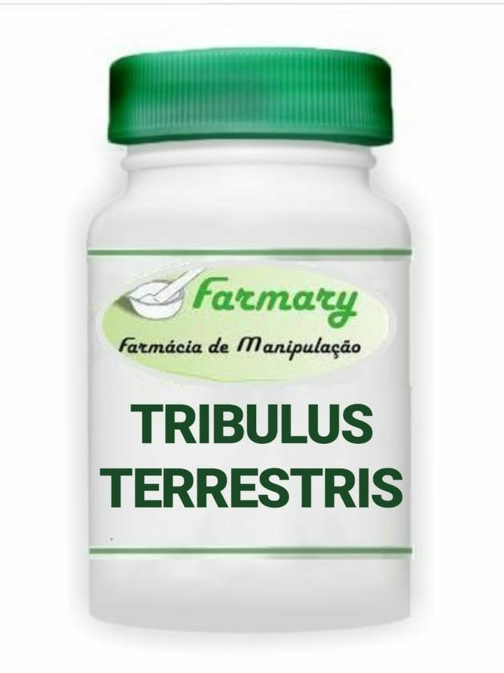 TRIBULUS TERRESTRIS 500MG