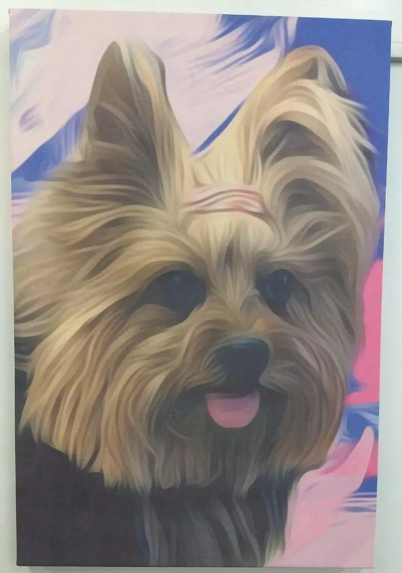 Impressão em Tecidos Canvas em Algodão em Metro² Corrido