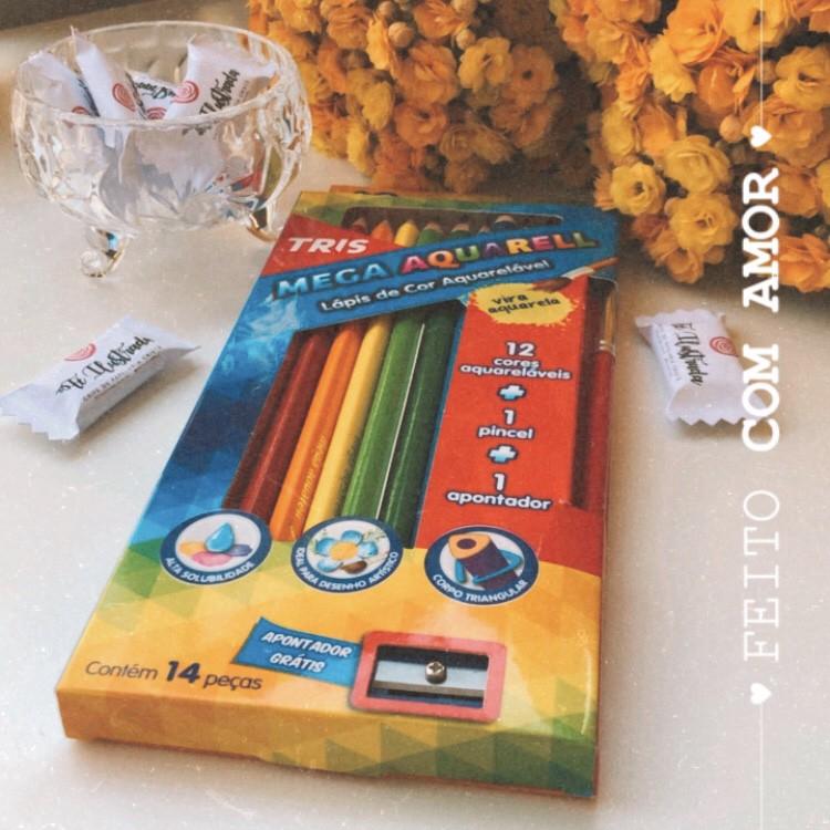 Aquarela em Lápis 12 cores + 1 pincel e 1 apontador
