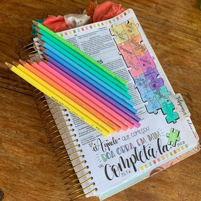 Lápis 12 cores PASTEL