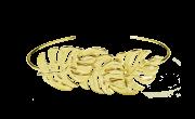 Bracelete Costela de Adão