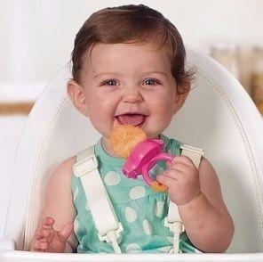 Alimentador Fresh Food Munchkin - Roxo