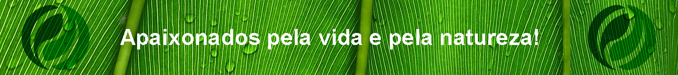 slogan kukulistore