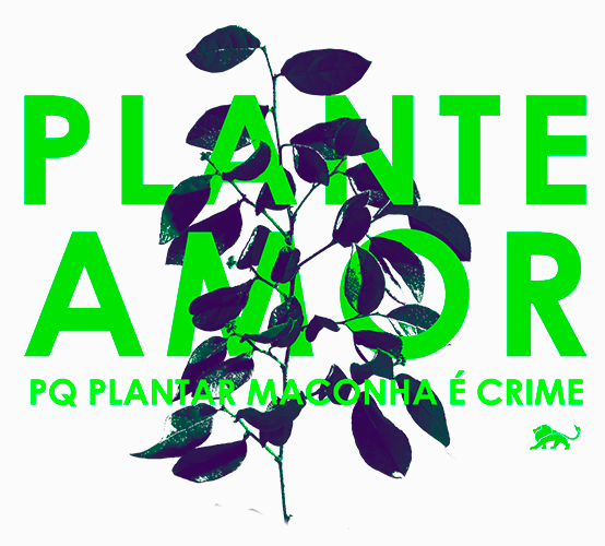 Plante amor