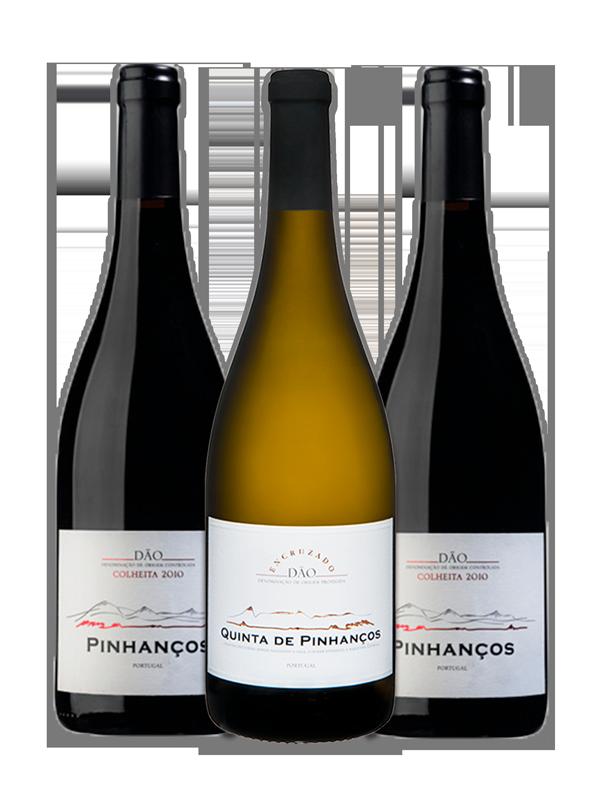 Kit Pinhanços - Álvaro de Castro