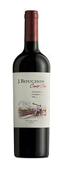 Vinho Tinto J. Bouchon Canto Sur 2016