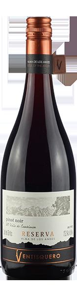 Vinho Tinto Ventisquero Reserva Alma de Los Andes Pinot Noir 2018