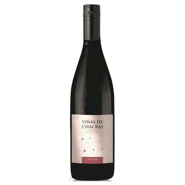 Vinho Tinto Viñas de Chacras Pinot Noir 750ml