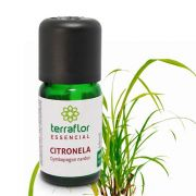 Óleo essencial Citronela 10 ML