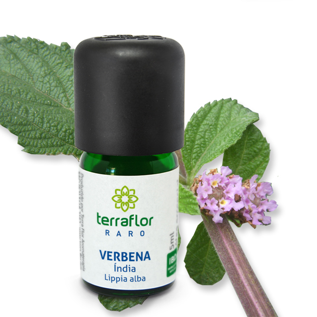Óleo essencial Verbena da Índia 05 ml