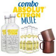 Combo Absolut Citron Mule Cocktail - 2x Absolut Citron + 5x Ginger Beer + 2x Canecas de Aluminio