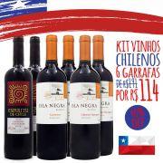 Kit Vinhos do Chile - 6 unidades