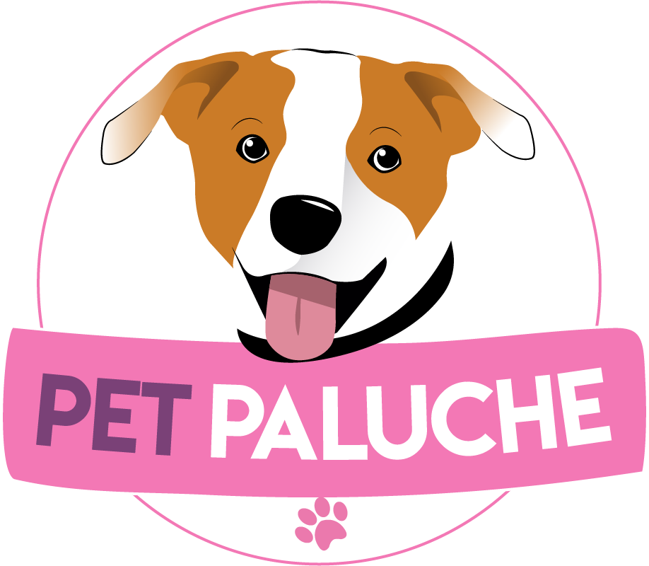 Pet Paluche