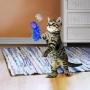 Brinquedo Vara extensível Kong Fishing Pole Teaser com catnip para gatos
