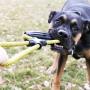 Corda Kong Jaxx Infinity Tug cabo de guerra para cães