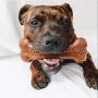 Pet Qwerks Flavorit BarkBone Chicken - brinquedo de nylon sabor frango para cães
