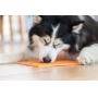 Tapete de Lamber LickiMat Buddy para cães e gatos