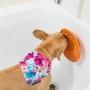 Tapete de Lamber LickiMat Splash com ventosa para cães e gatos