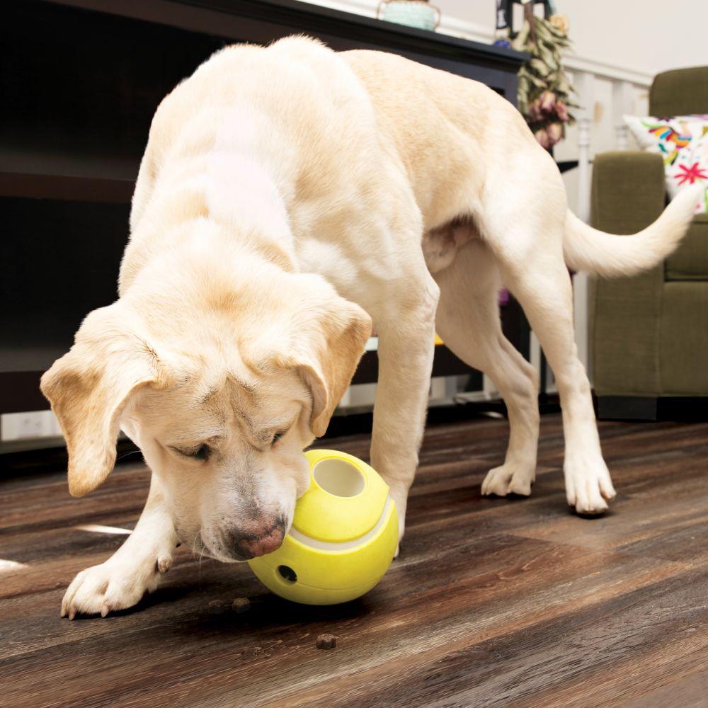 Bola de Tênis Recheável para colocar Petiscos KONG Rewards Tennis para cães