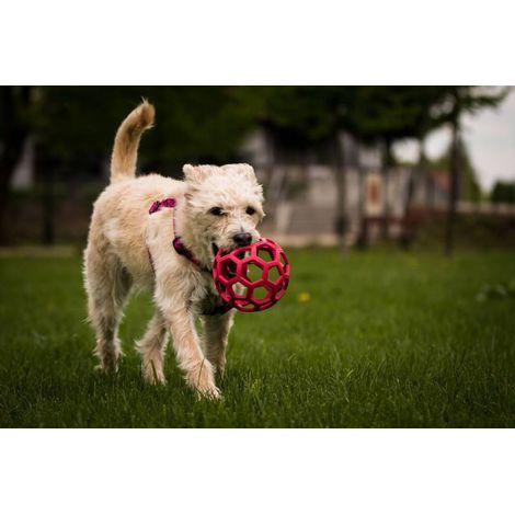 Brinquedo para cães Bola Holee Roller JW