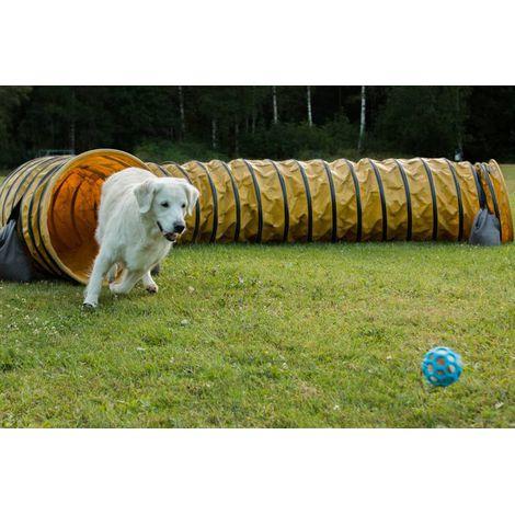 Brinquedo para cães Bola Megalast JW