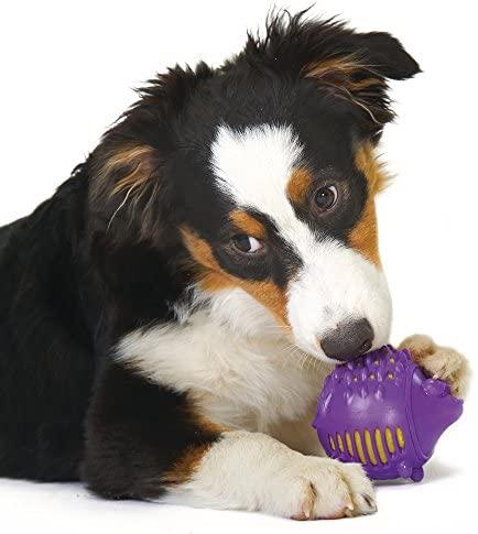 Bola Porco Espinho de Borracha para Cães Gummy Plush Petstages