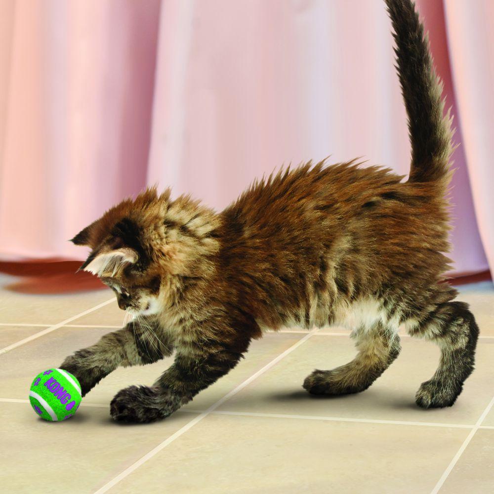 Bolinhas para gatos com guizo Kong Cat Active Tennis Balls