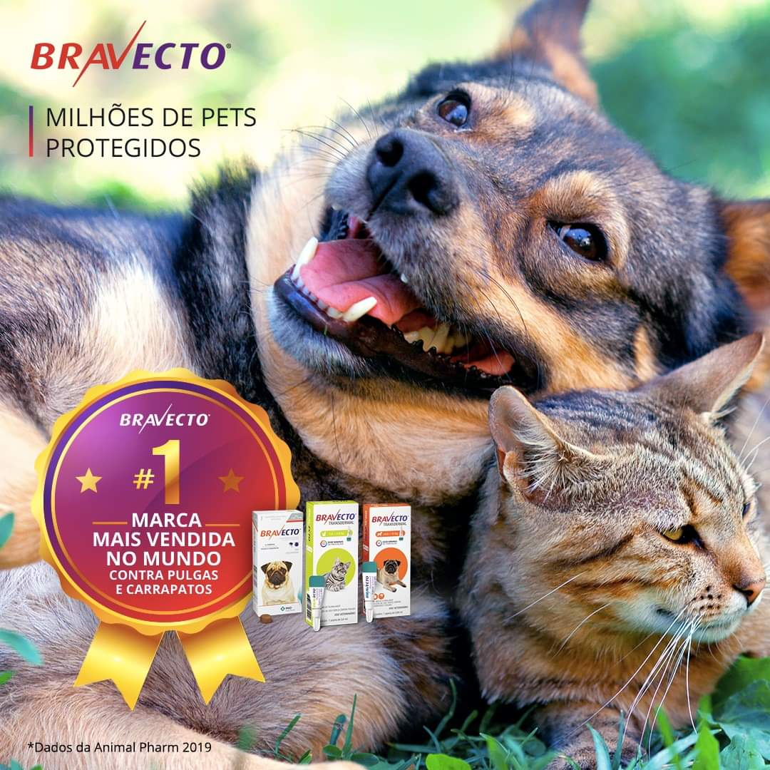 Bravecto Combo 2 caixas Cães de  2 A 4,5 Kg + 2 BRINDES