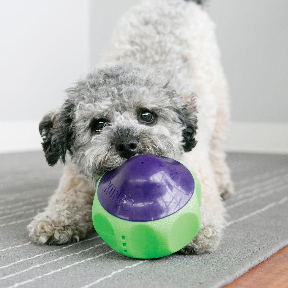 Brinquedo de Borracha com apitos Kong Babbler para cães