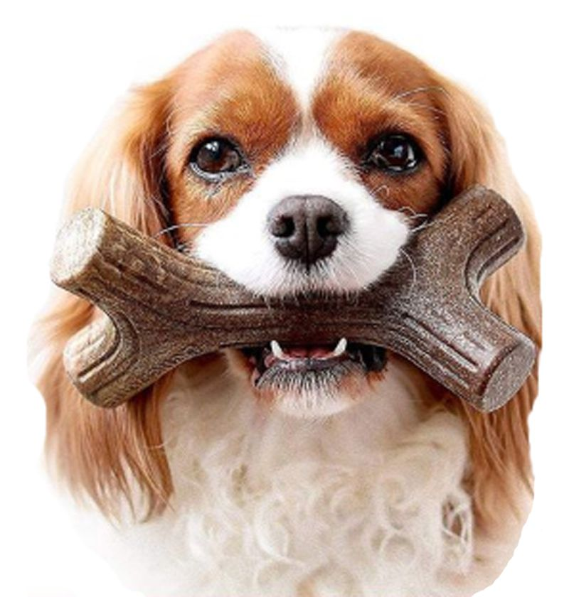 Brinquedo de roer para cães Benebone Bacon Stick