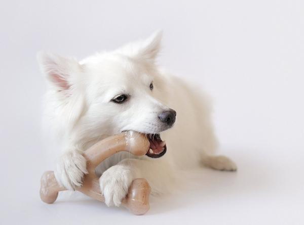 Brinquedo de roer para cães Wishbone Benebone sabor Frango